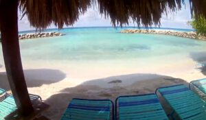 De Palm Island